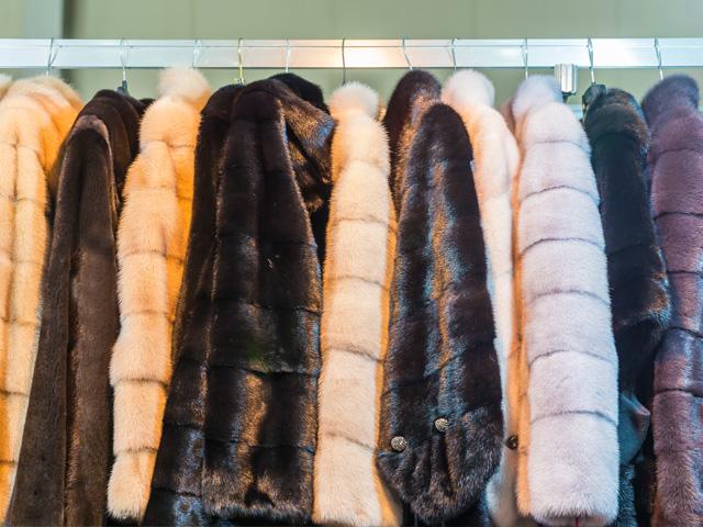 Fur Cleaning Glazing & Storage